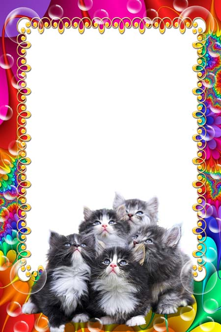 Psd my kittens photo frame template 2362x3543