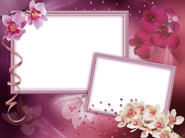 Psd orchid flowers 2 photo frame 2362x1772