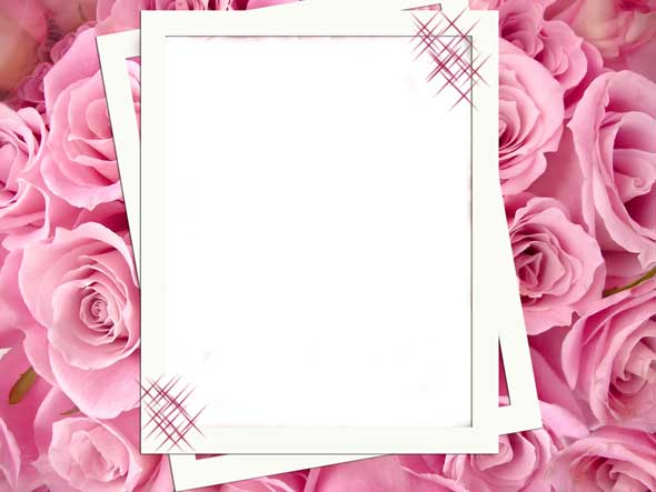 Psd pink roses flowers romantic photo frame 3425x2573