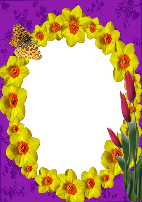 Psd summer photo frame with yellow flowers and butterfly 05 2480x3508