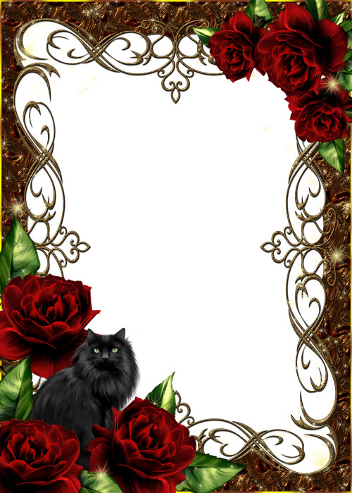 PSD.Frame.Black.Cat.Roses.4122x5768